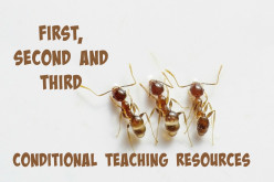 First, Second and Third Conditional Teaching Resources
