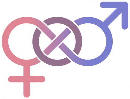 The infinite symbol represents bisexuality.