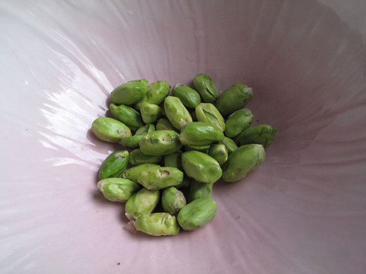 Raw (fresh) pistachios without skins