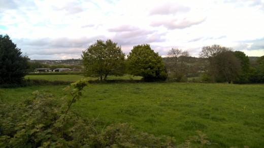 Across the Field 640