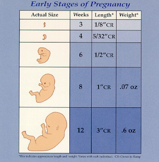 How Soon To Know You Are Pregnant 34