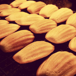 Classic Madeleine Pastry - With A Modern Twist (Simple Recipe)