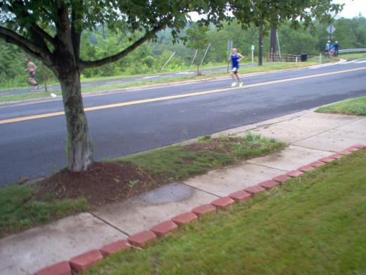 Half Marathon Runners (8 of many)