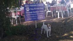 Dog-friendly Restaurants in the Phoenix Area