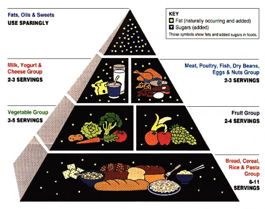 An older version of the American Food Pyramid