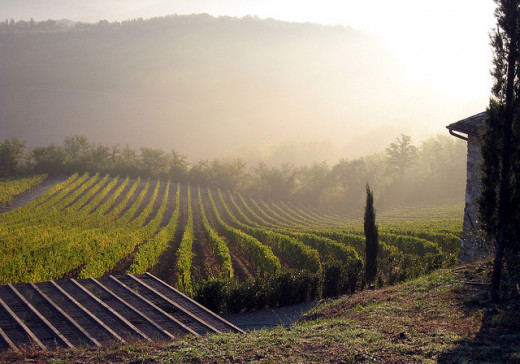 Tuscany is a beautiful region boasting delicious and healthy food options.