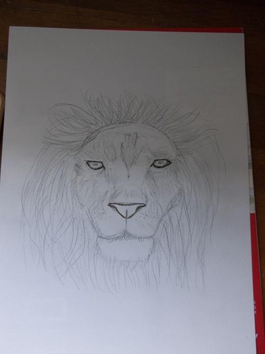 Sketch in Graphite