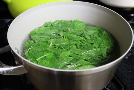 Wash mint leaves
