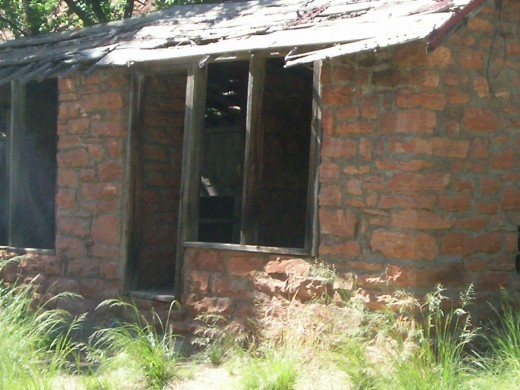 This was an old farm storehouse. There was an old chicken coop inside.
