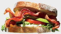 Gourmet Sandwiches Recipes
