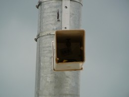 Fake Security Camera by John of Austin via Flickr.  Notice the wasps nest, UPC sticker and broken LED seen inside this fake surveillance camera