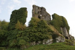 Carrigogunnell Castle in Ireland...possibly a site where the fae hide today.