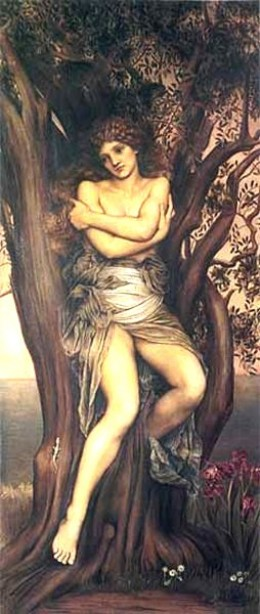 A dryad is a spirit of a tree that will sometimes shapeshift and take different forms.