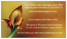 Free Bible studies