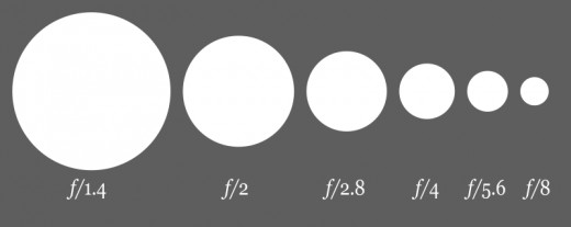 A diagram of decreasing aperture sizes along with the increasing f-stop numbers