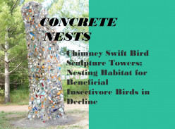Concrete Nests: Funding Bird Habitat Art Sculpture on Kickstarter