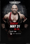 WWE Elimination (2015) Chamber Review