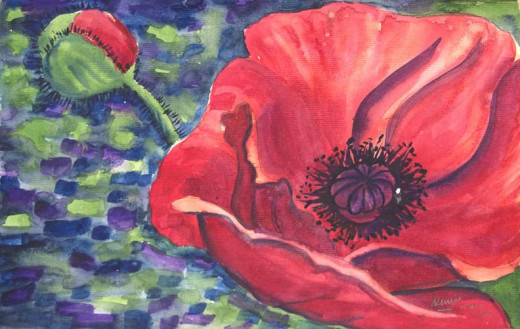 Watercolor Oriental Poppy