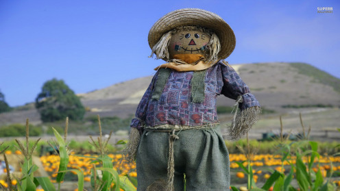A nice-looking, all-American scarecrow.