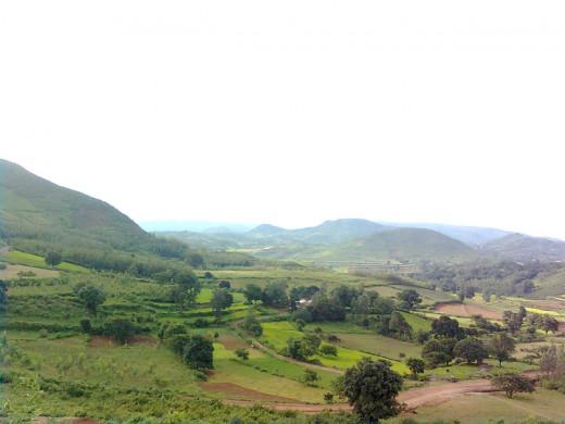 Araku Valley, Vishakhapatmnam, Andhra Pradesh By  Adityamadhav83 [CC-CC-BY-SA-3.0 (http://creativecommons.org/licenses/by/3.0/)], via Wikimedia Commons