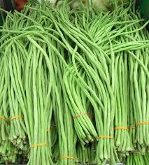 harvested green for the fresh market