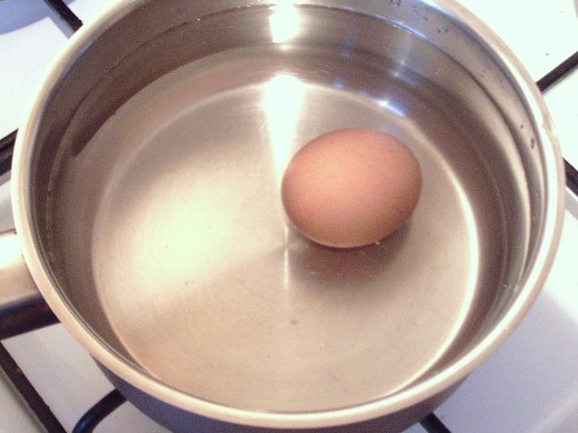Egg is put on to boil