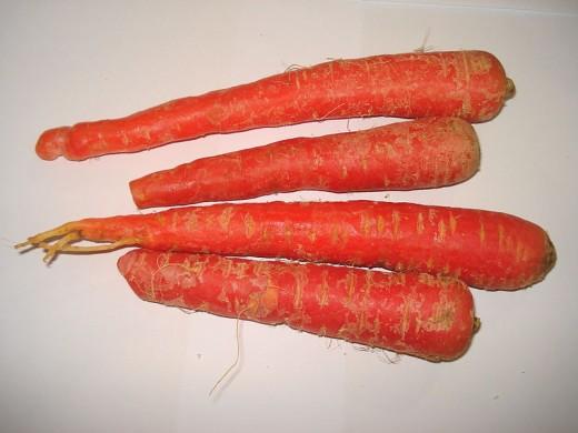 Gajar (carrot)