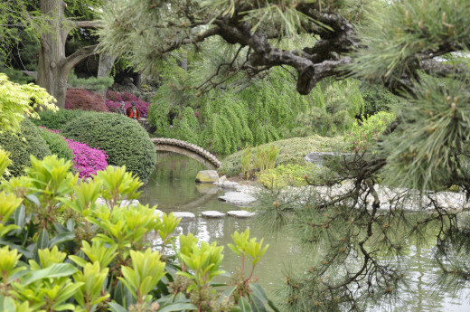 A view of the Brooklyn Botanical Gardens
