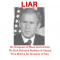 "The Great Lie of the Last Century: George W. Bush and the ""Search"" for Weapons of Mass Destruction"