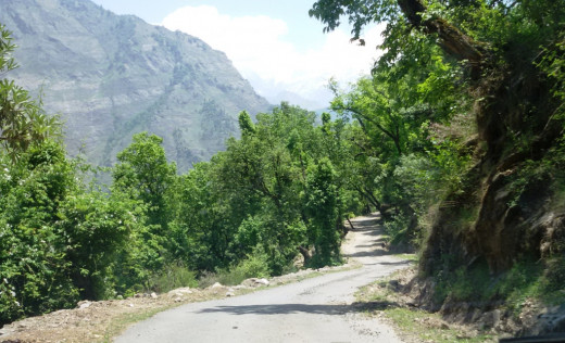 The road from Helang to Udgam 2