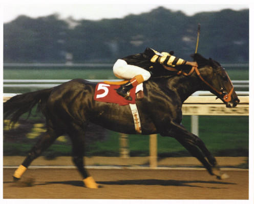 Seattle Slew.