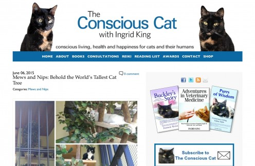 Screenshot of The Conscious Cat website