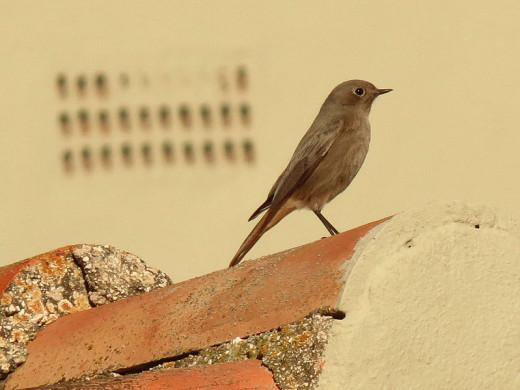 Taken in Spain.