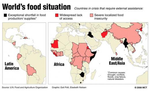 World  Food Supply