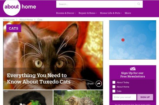 Screenshot of the cats.about.com website