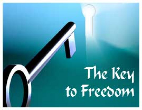 Invest into the ideas and ways that make money and building assets to gain financial freedom and the freedom of choice.
