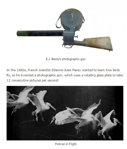 Image of the photographic gun which used glass plates for capturing its images.