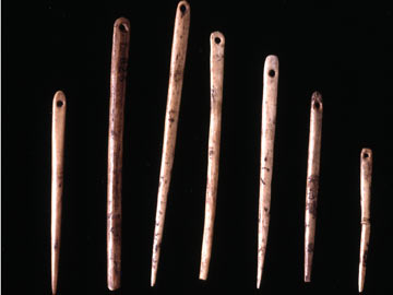 These sewing needles were made out of animal bone during the stone age.