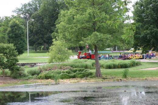 The Train Exploring the Park