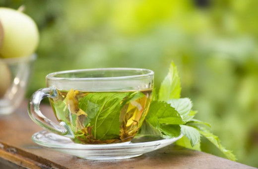 Catnip tea has a calming, sedative effect on humans, that's very similar to chamomile