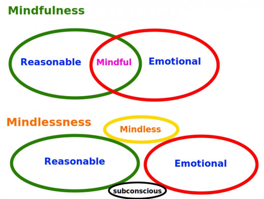 Mindfulness versus Mindlessness. Discover the difference and what is right for you.