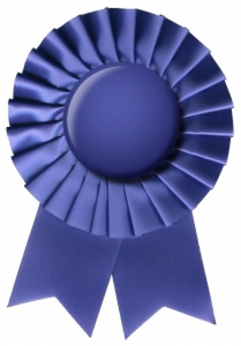 A Blue Ribbon for First Prize