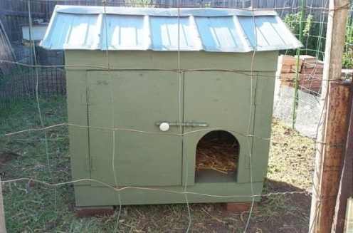 The Old Chicken Coop