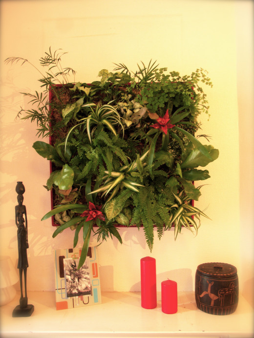 Vertical and wall gardens are ideal for continuously harvesting herbs for the kitchen