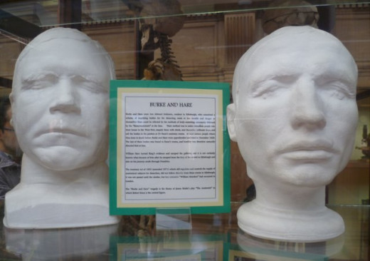 Death mask of Burke and life mask of Hare, in the Anatomical Museum of Edinburgh University