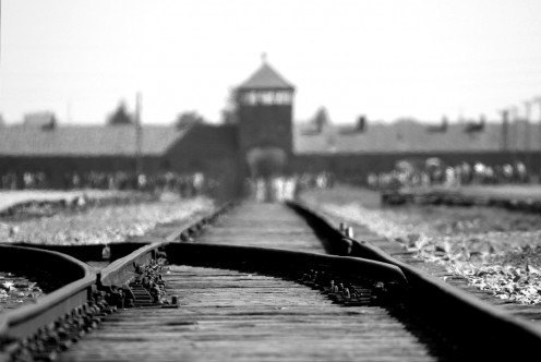 The world was indifferent to the plight of the Jews during the holocaust.