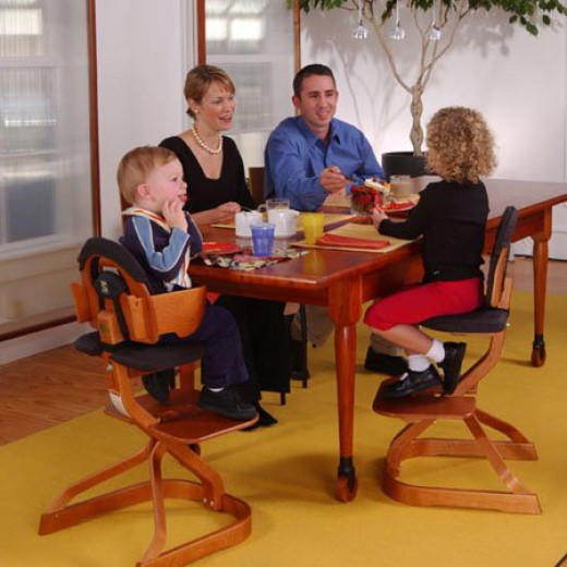 Svan can create your common family dining  table more appealing with Scandinavian-designed bentwood Svan high chairs
