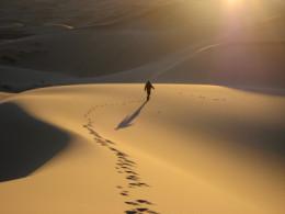 The Spirit Will Lead Us Through Life's Deserts