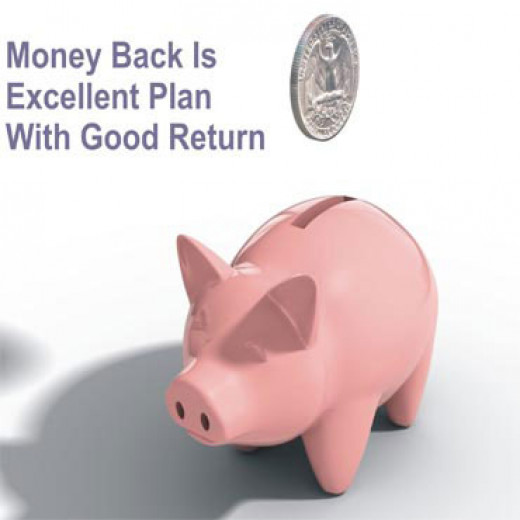 Choose Moneyback Plans for good returns.