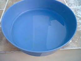 A bowl of water